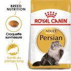 Royal Canin Persan pour chat