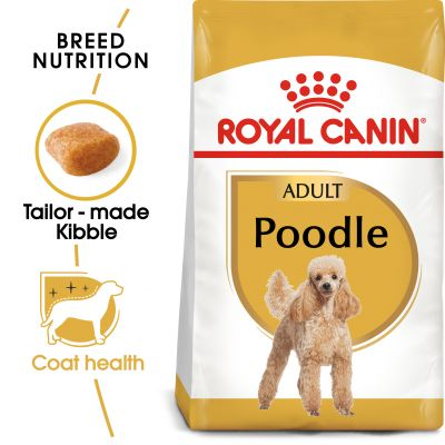 Royal Canin Poodle Adult