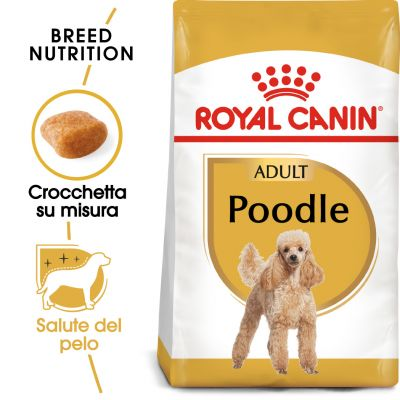 Royal Canin Poodle Adult (barbone)