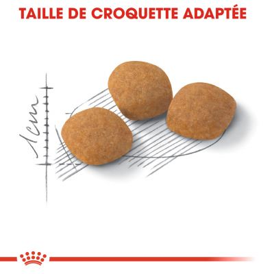 Royal Canin Protein Exigent pour chat