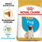 Royal Canin Pug / Mops Puppy