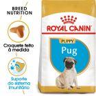 Royal Canin Pug Puppy/Junior