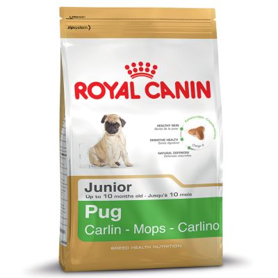 Royal Canin Pug Puppy/Junior