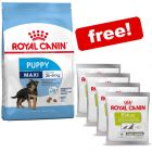 Royal Canin Puppy Dry Dog Food + 4 x 50g Educ Low Calorie Snacks Free!*