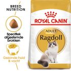 Royal Canin Ragdoll Adult - Kattenvoer