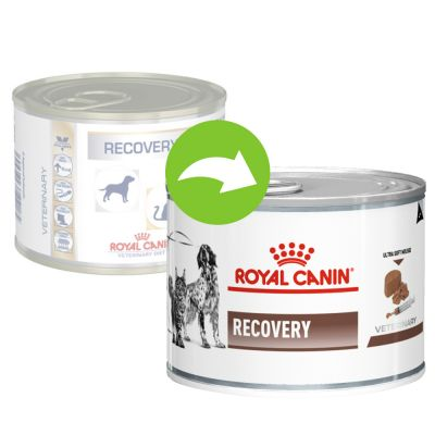 Royal Canin Recovery Veterinary Diet latas para cães e gatos
