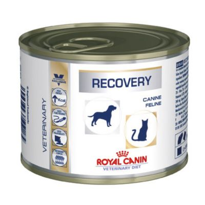 Royal Canin Recovery Veterinary Diet latas para perros y gatos