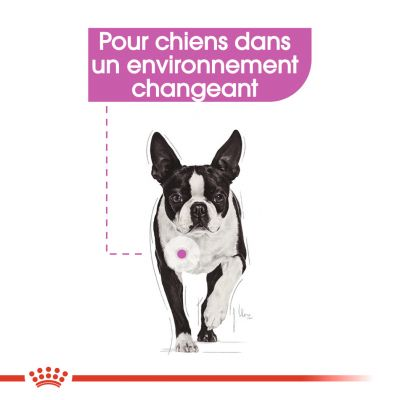 Royal Canin Relax Care pour chien