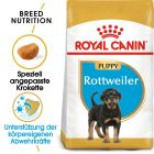 Royal Canin Rottweiler Junior pour chiot
