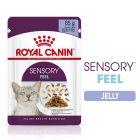 Royal Canin Sensory Feel σε Ζελέ