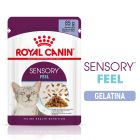Royal Canin Sensory Feel in Gelatina Alimento umido per gatti