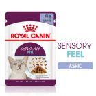 Royal Canin Sensory Feel în gelatină