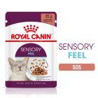 Royal Canin Sensory Feel în sos