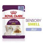 Royal Canin Sensory Smell σε Ζελέ