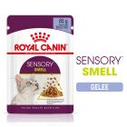 Royal Canin Sensory Smell en gelée