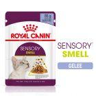 Royal Canin Sensory Smell en gelée pour chat