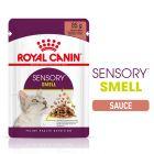 Royal Canin Sensory Smell en sauce