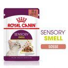 Royal Canin Sensory Smell en sauce pour chat