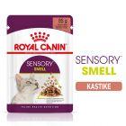 Royal Canin Sensory Smell in Gravy