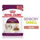 Royal Canin Sensory Smell in Salsa Alimento umido per gatti
