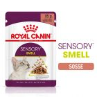 Royal Canin Sensory Smell in Sauce