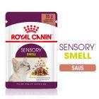 Royal Canin Sensory Smell in Saus Kattenvoer