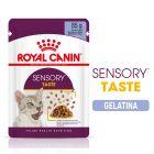 Royal Canin Sensory Taste en gelatina