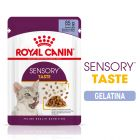 Royal Canin Sensory Taste in Gelatina Alimento umido per gatti