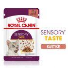 Royal Canin Sensory Taste in Gravy