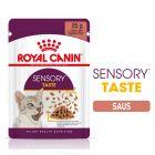 Royal Canin Sensory Taste in Saus Kattenvoer