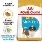 Royal Canin Shih Tzu Junior pour chiot