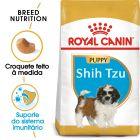 Royal Canin Shih Tzu Puppy/Junior