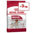 Royal Canin Size -bonuspakkaus: 15 + 3 kg  /  8 + 1 kg!
