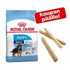 Royal Canin Size koiranruoka + purutangot kaupan päälle!