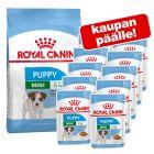 Royal Canin Size -kuivaruoka + vastaava märkäruoka kaupan päälle!