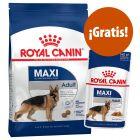 Royal Canin Size pienso + comida húmeda ¡gratis!