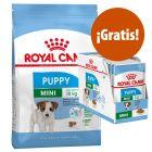 Royal Canin Size Puppy / Starter pienso + comida húmeda ¡gratis!