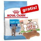 Royal Canin Size + snacks for hunder gratis med på kjøpet!