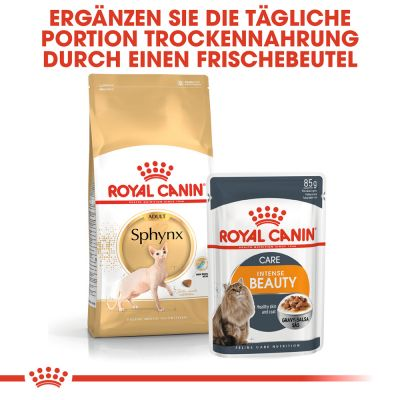 Royal Canin Sphynx 33 pour chat