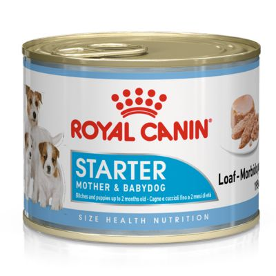 Royal Canin Starter Mousse Mother Amp Babydog Free P Amp P 163 35