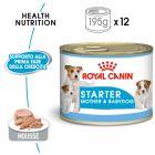 Royal Canin Starter Mousse Mother & Babydog Alimento umido per cani