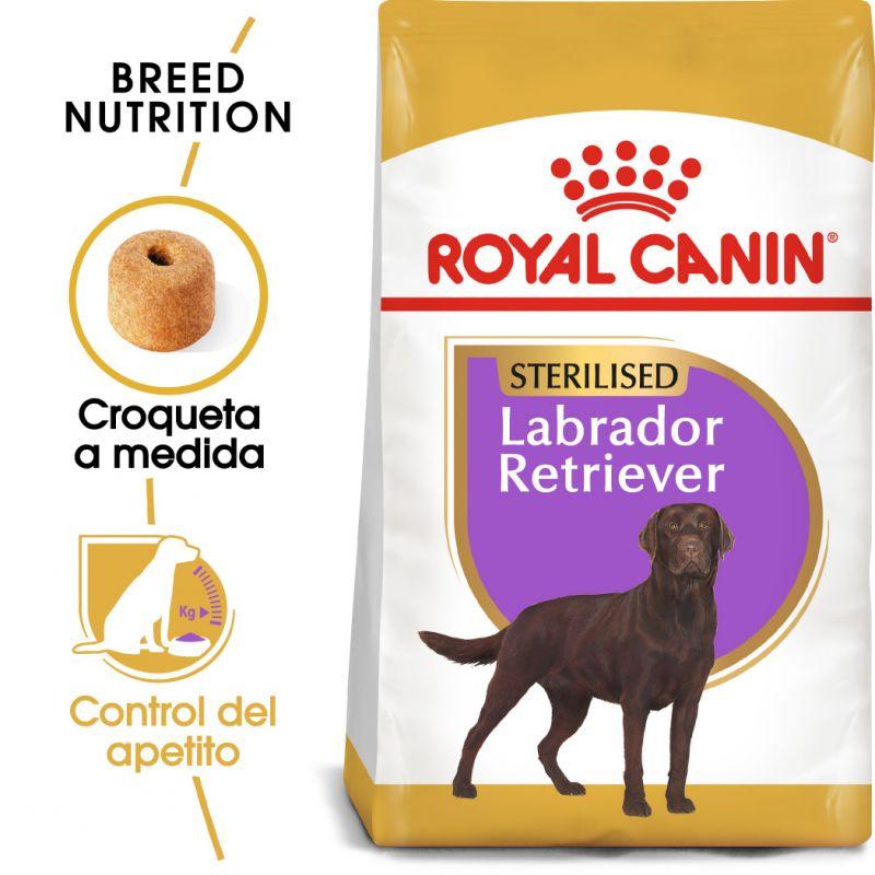 Royal Canin Sterilised Labrador Retriever Adult