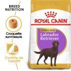 Royal Canin Sterilised Labrador Retriever Adult pour chien