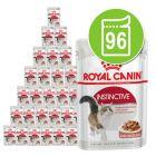Royal Canin Super-Økonomipakke 96 x 85 g