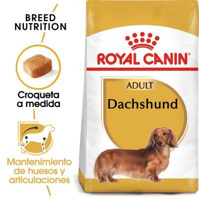 Royal Canin Teckel Adult