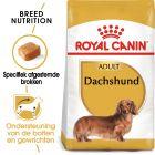 Royal Canin Teckel Adult - Hondenvoer