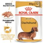 Royal Canin Teckel Adult - Hondenvoer