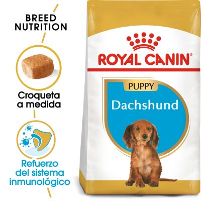 Royal Canin Teckel Puppy
