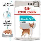 Royal Canin Urinary Care comida húmeda para perros