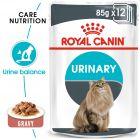 Royal Canin Urinary Care szószban nedvestáp